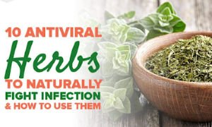 10 Powerful Herbs