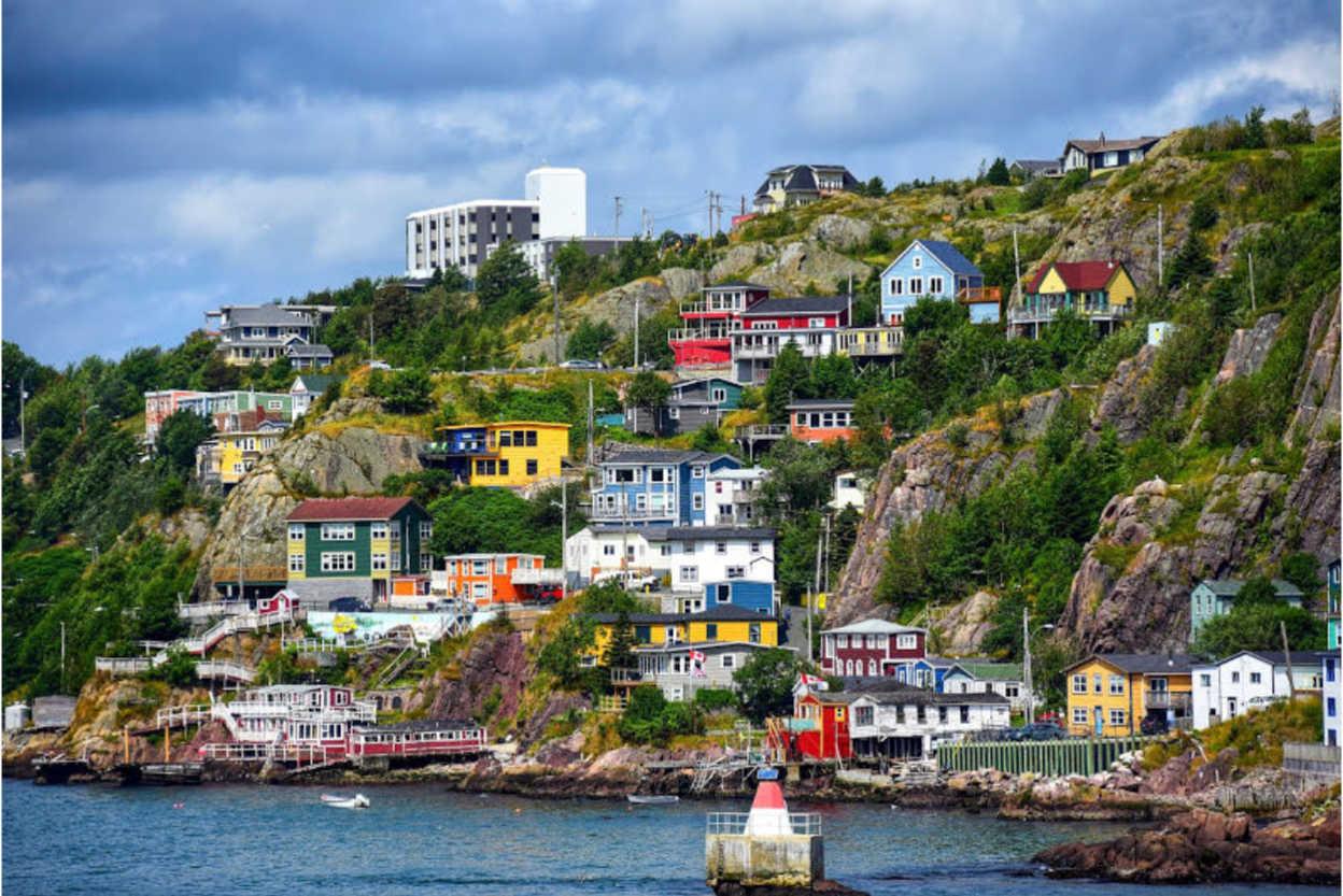 Newfoundland-1