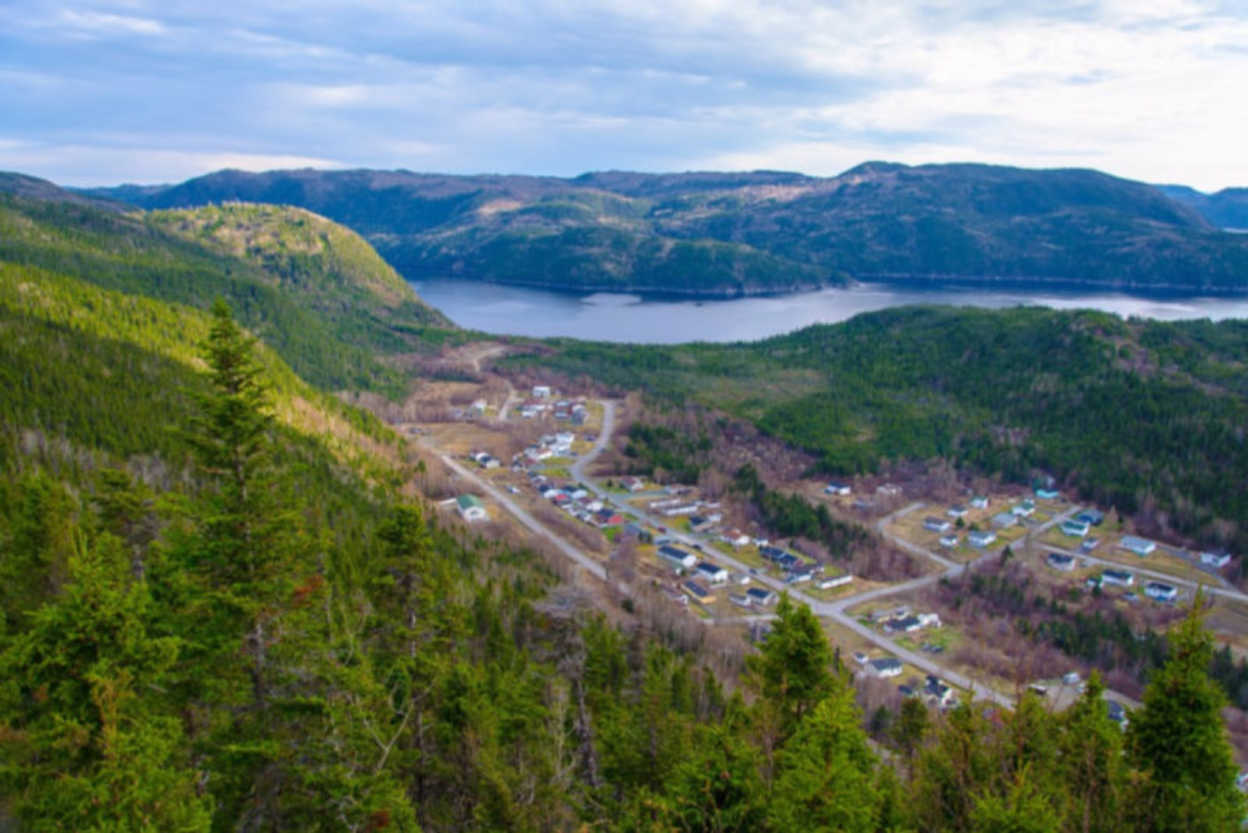 Seal-Cove-Newfoundland-view-from-the-bond-site