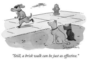 A-Brisk-Walk
