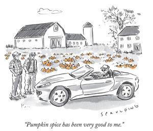 Pumpkin Spice Goodies